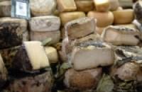 cheese-kazen